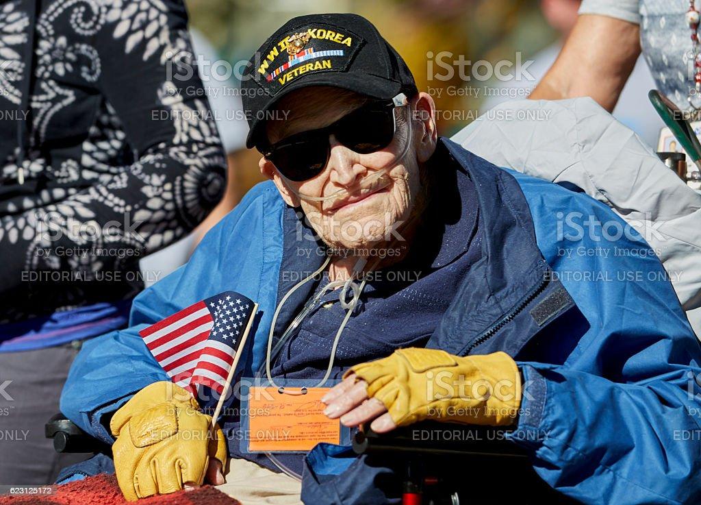 WWII American Hero veteran in Veterans Day Parade stock photo