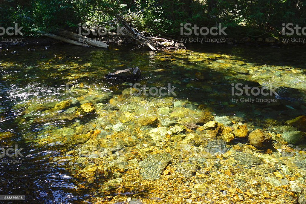 American River Clear Shadow stock photo