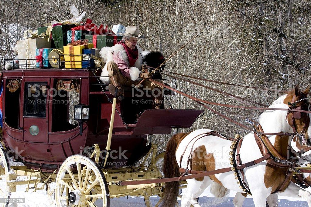 American Saddlebred Pintos stock photo