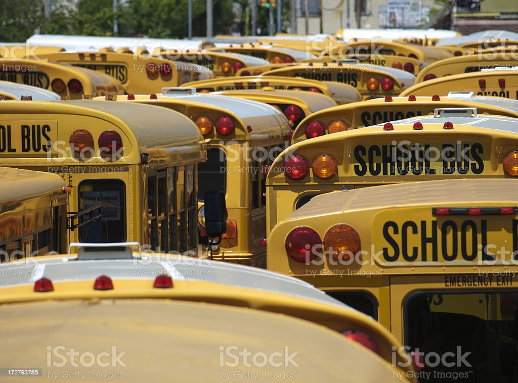 American School buses stock photo