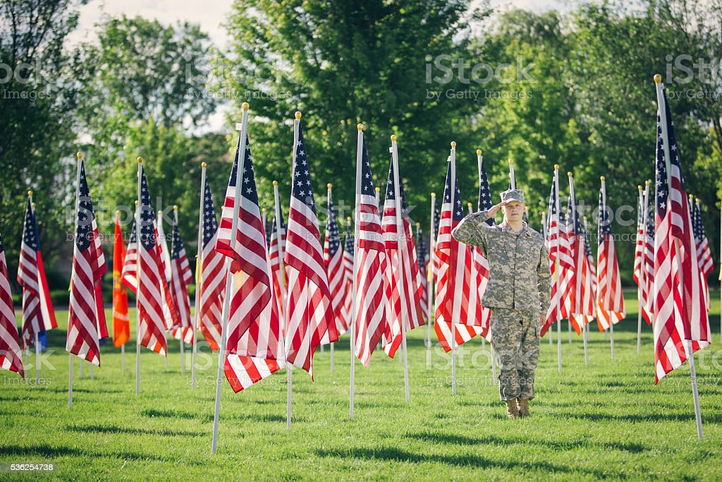 American Soldier saluting in a field of flags stock photo