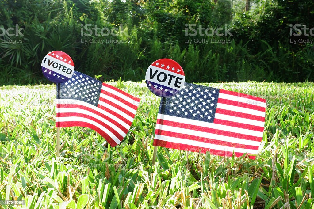 American stick flags with VOTE campaign buttons stock photo