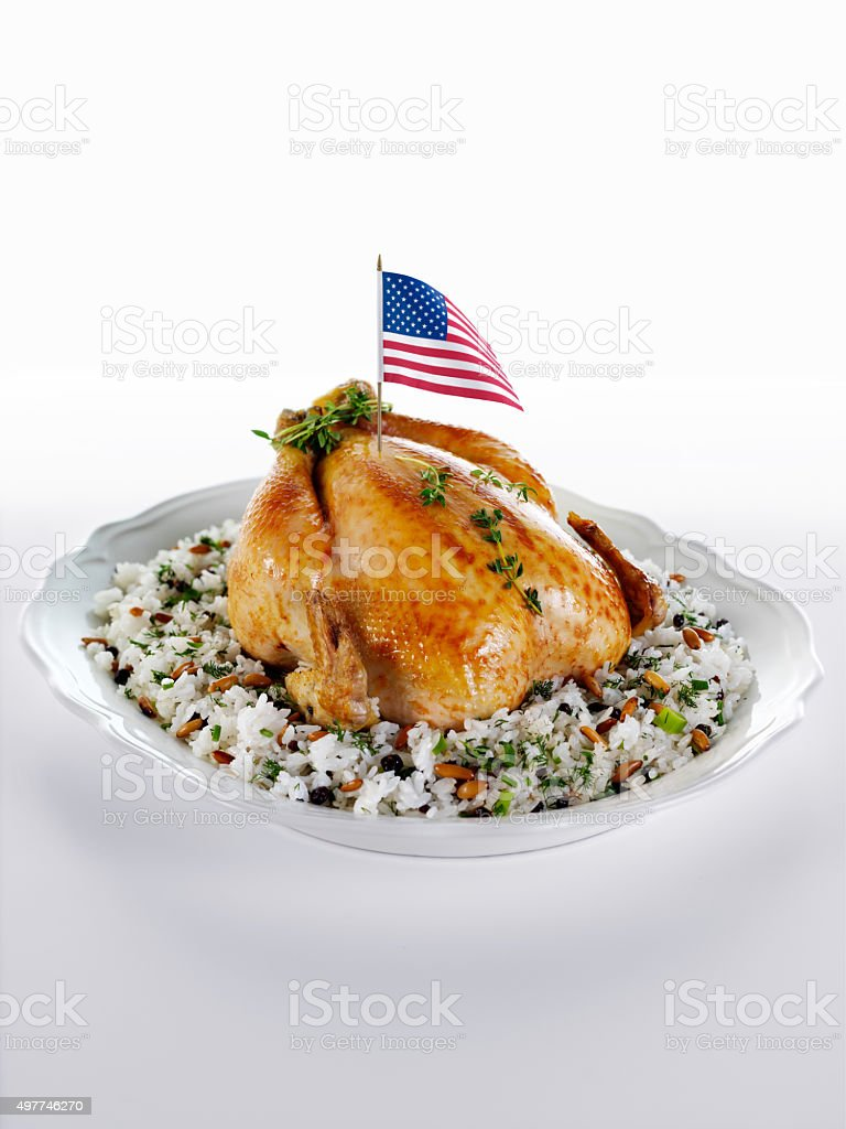 American style roasted Turkey stock photo