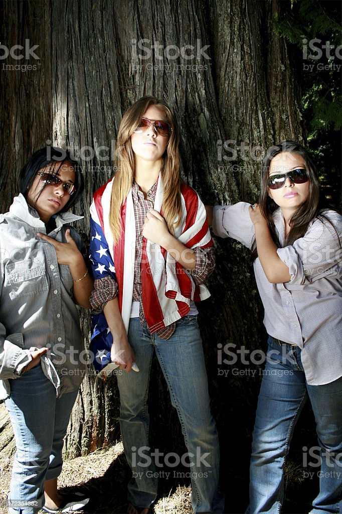 Americans royalty-free stock photo