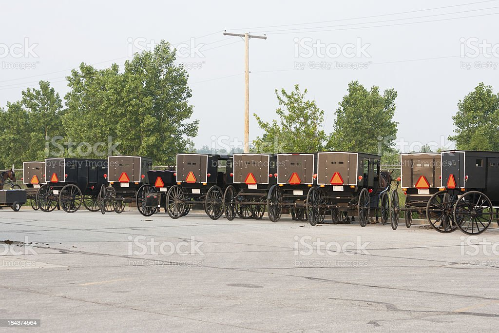 Amish Buggies in a Row royalty-free stock photo