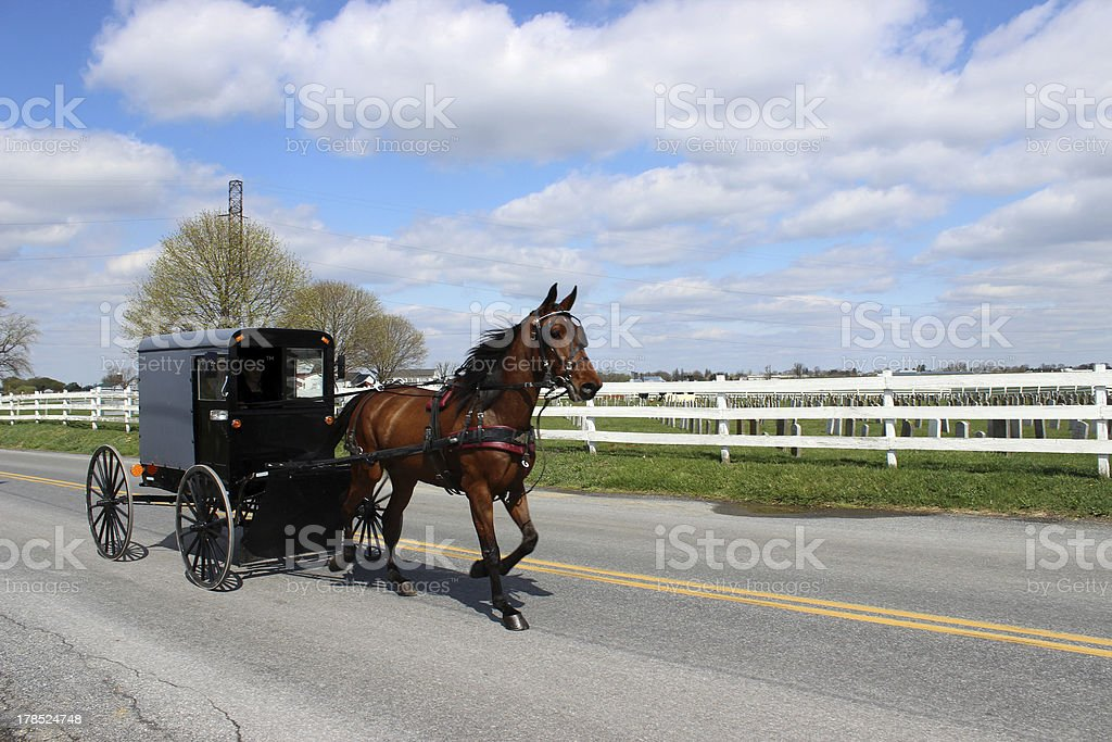 Amish Horse and buggy in Lancaster, Pennsylvania stock photo