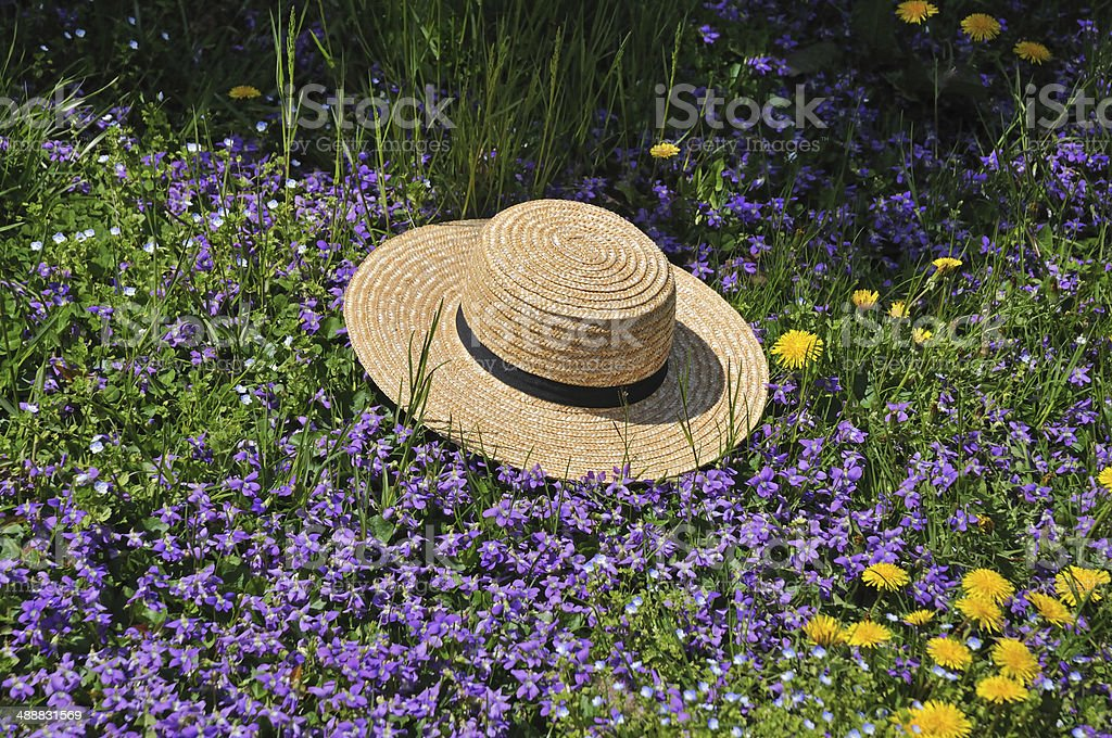 Amish straw hat at spring time stock photo