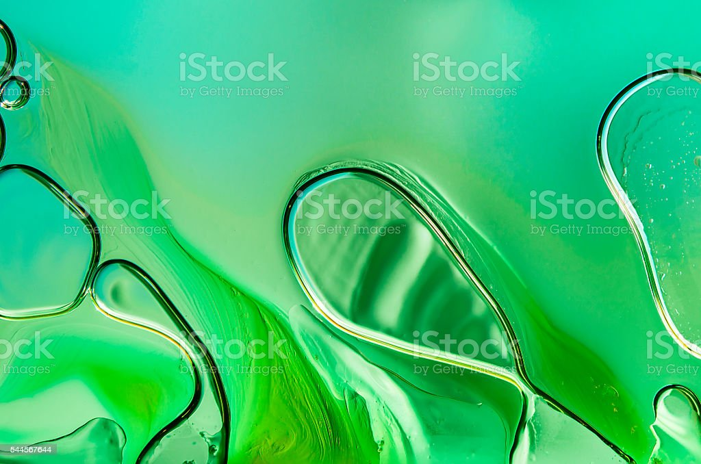 Amoebae stock photo