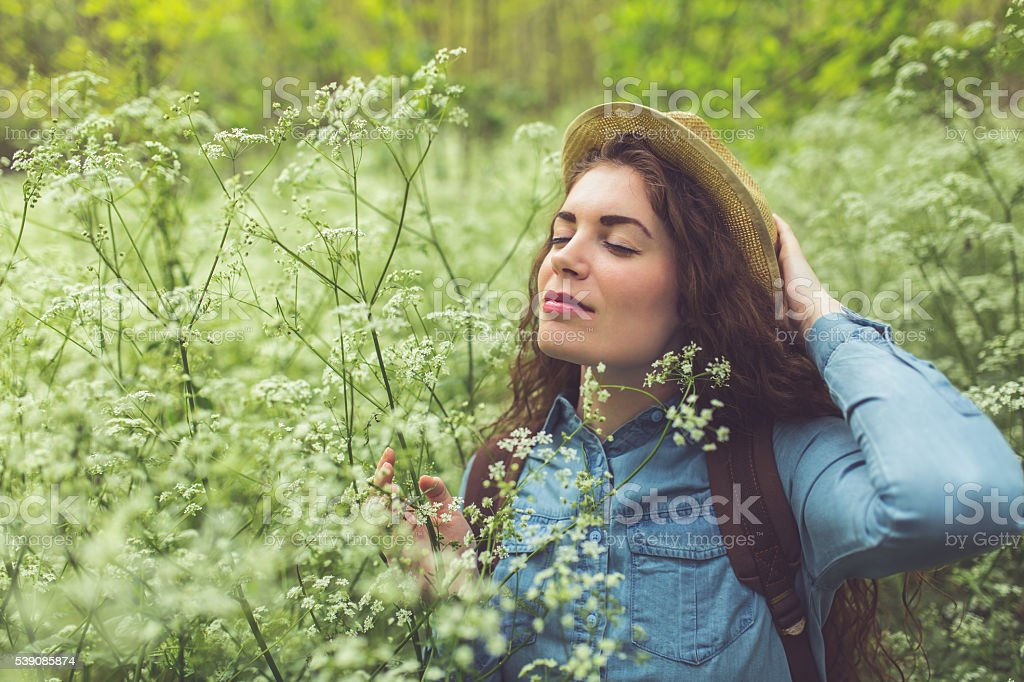 Among The Wildflowers stock photo