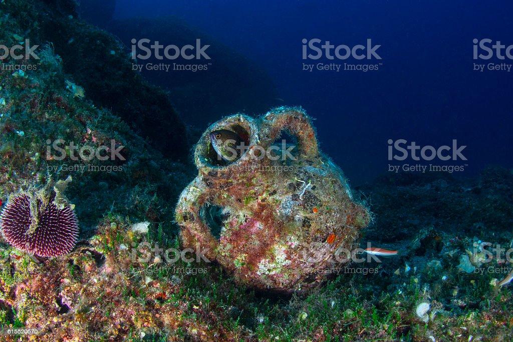 Amphora & Fish stock photo