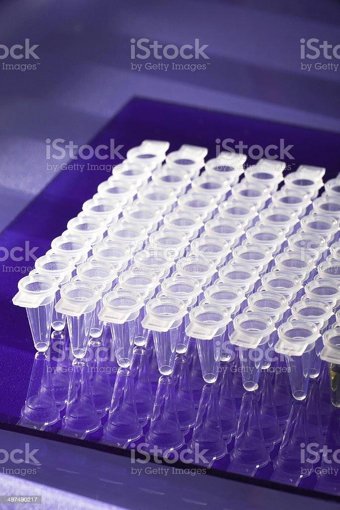 DNA amplification stock photo