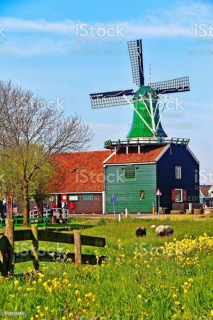 Amsterdam, Netherlands - May 04, 2016 - Dutch Windmill, Zaanse Schans stock photo