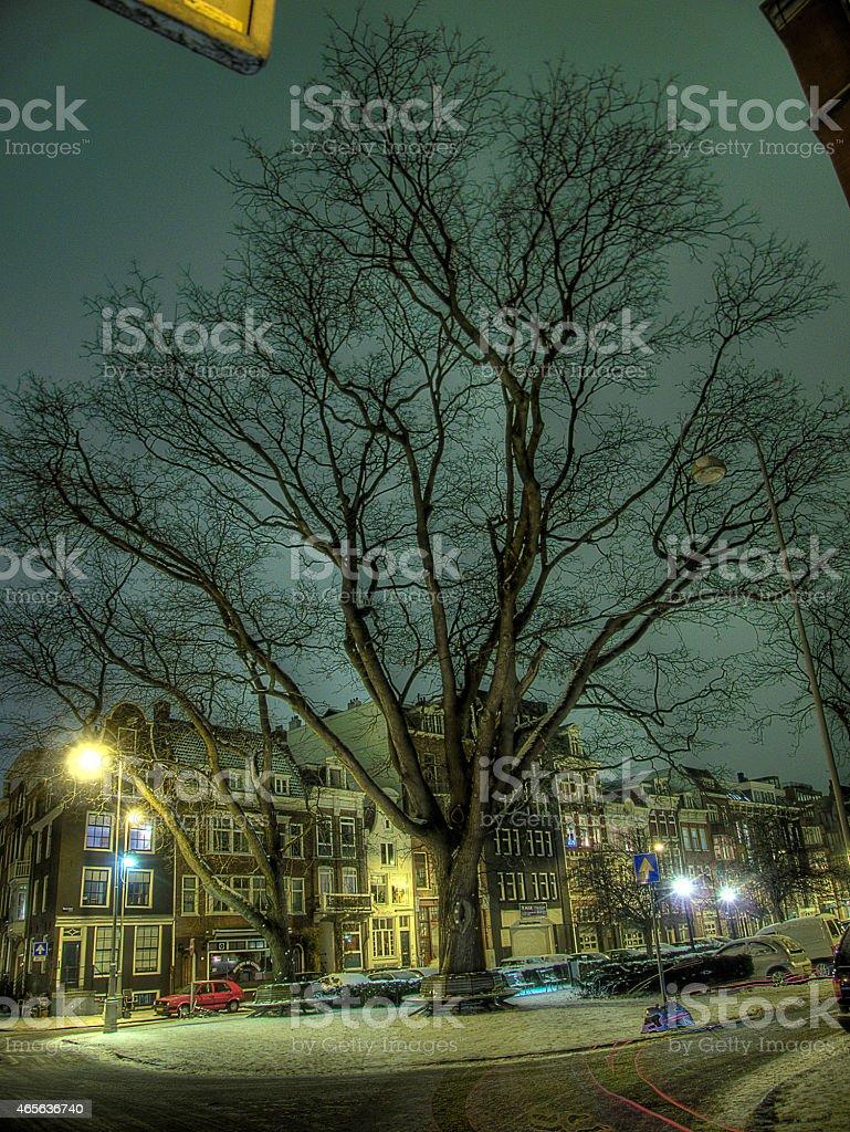 Amsterdam, Netherlands, night view in winter. stock photo