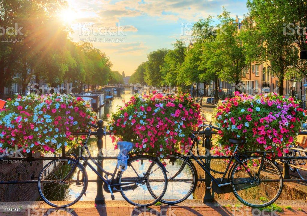 Amsterdam summer sunrise II stock photo