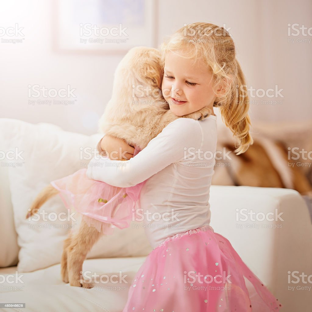 You're my poochie, you're my pal stock photo