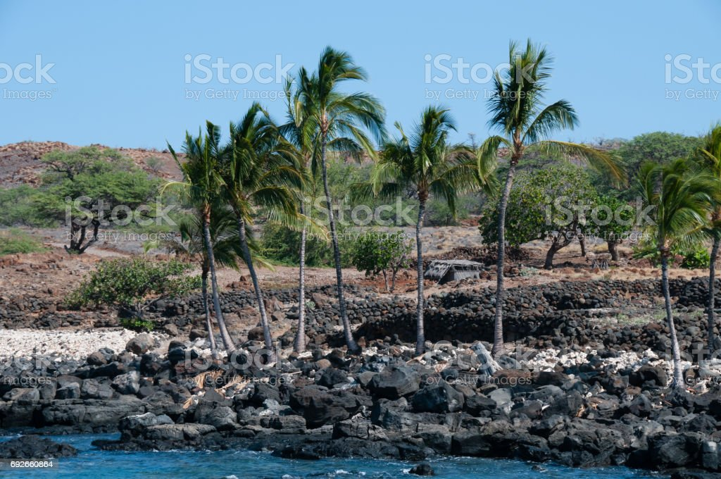 An ancient village with volcanic rock walls at Lapakahi State Historical park. stock photo