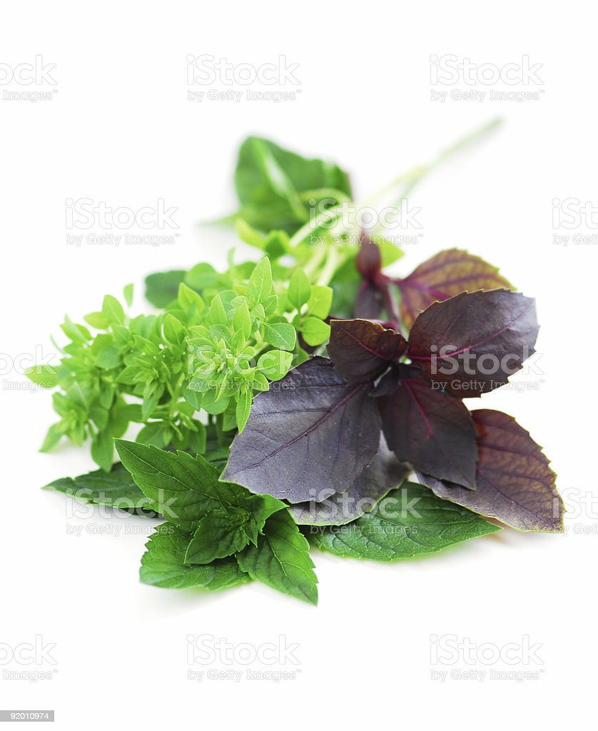 An assortment of different basil herbs  royalty-free stock photo