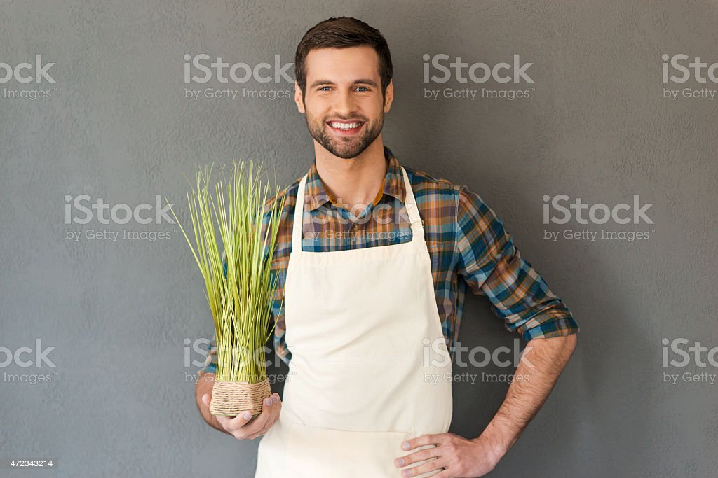 An attractive man in a white apron holding some herbs stock photo