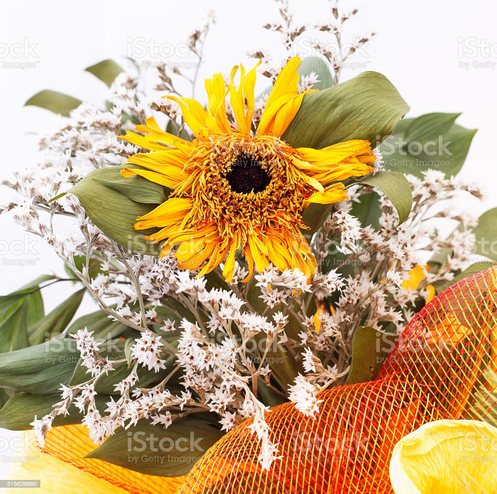 An autumnal bouquet, with dried sunflowers stock photo