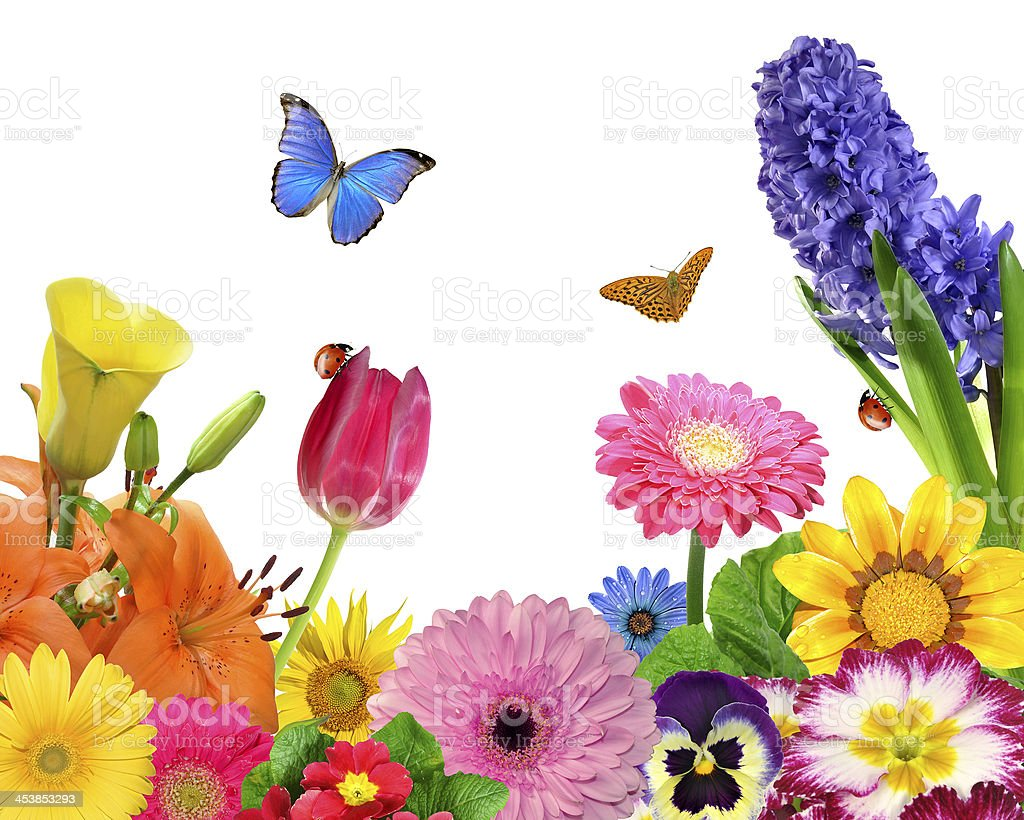 An colorful animated picture of flowers and butterflies royalty-free stock photo