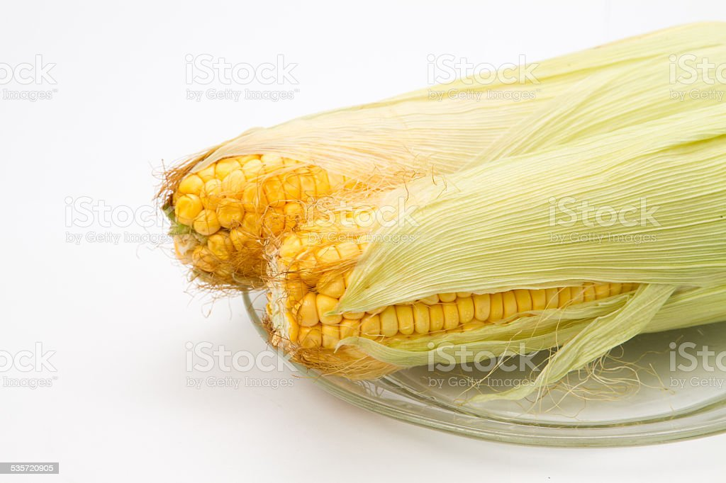 An ear of corn isolated on a white background royalty-free stock photo
