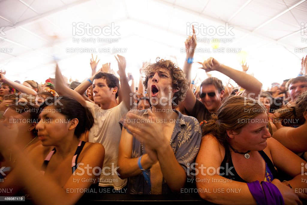 An ecstatic crowd of cheering fans at music festival stock photo