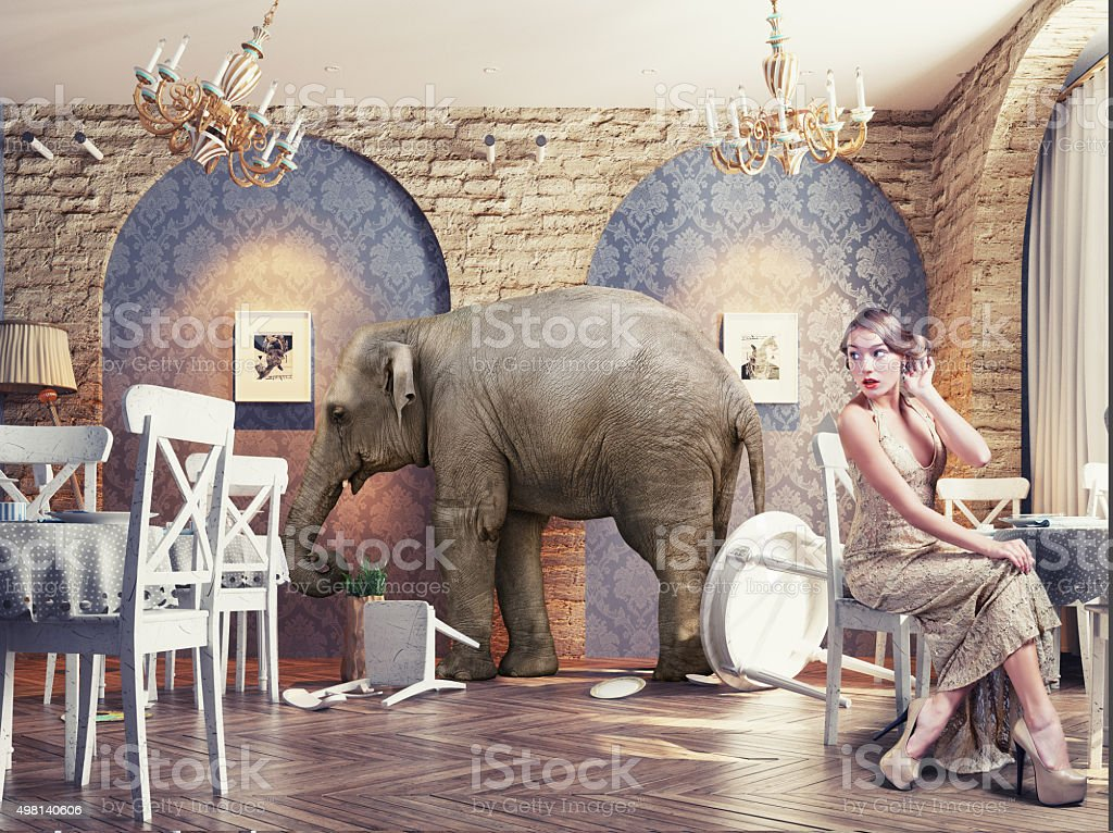 an elephant calm in the  restaurant stock photo