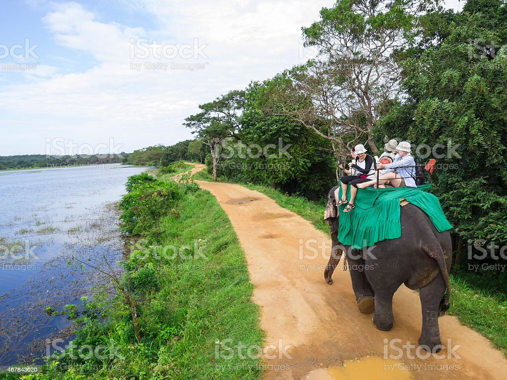 An elephant carrying a group of people down a path stock photo