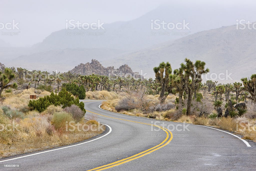 An Empty Road in the Desert stock photo