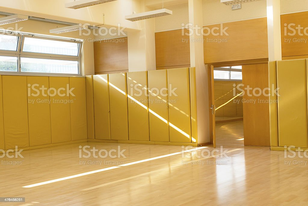 An empty sport hall for combative and other sports stock photo