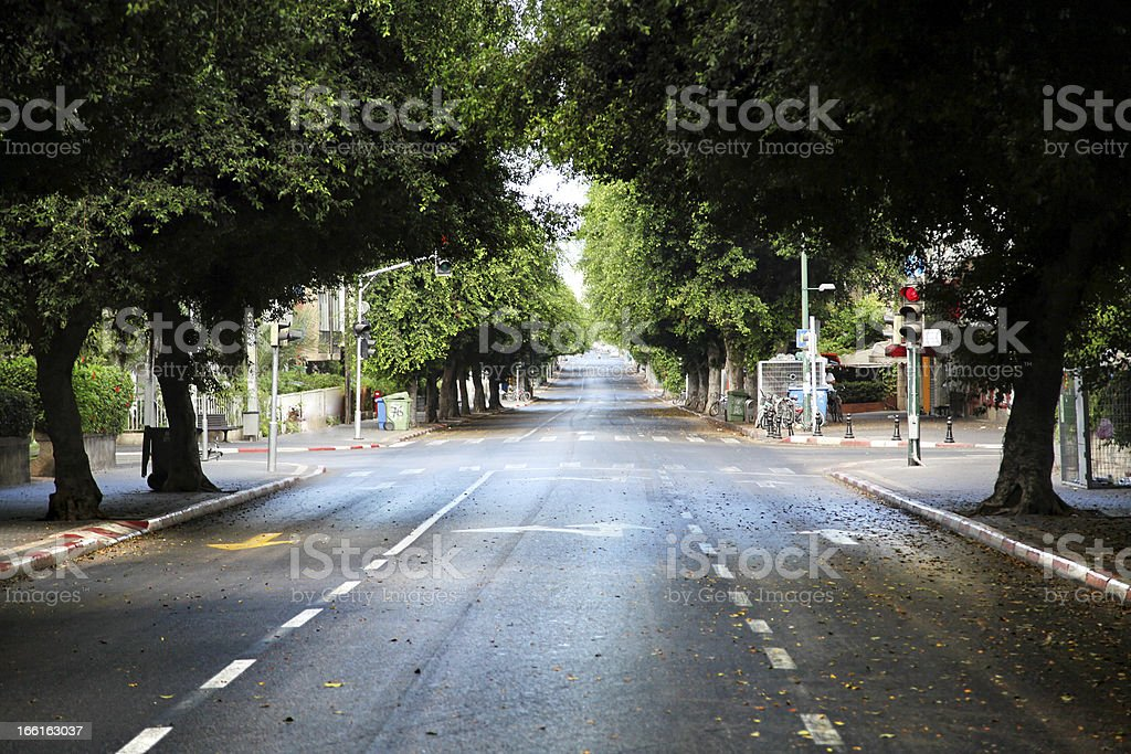 An empty street in Tel-Aviv at noon with lush trees  royalty-free stock photo