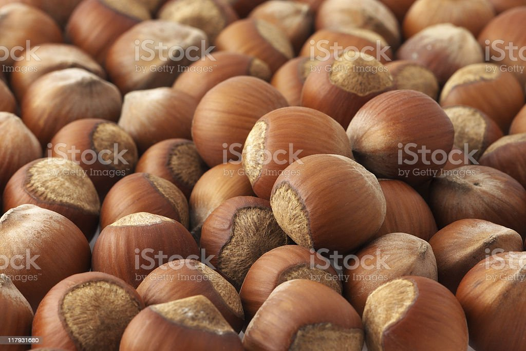 An entire shot of a large group of hazelnuts stock photo