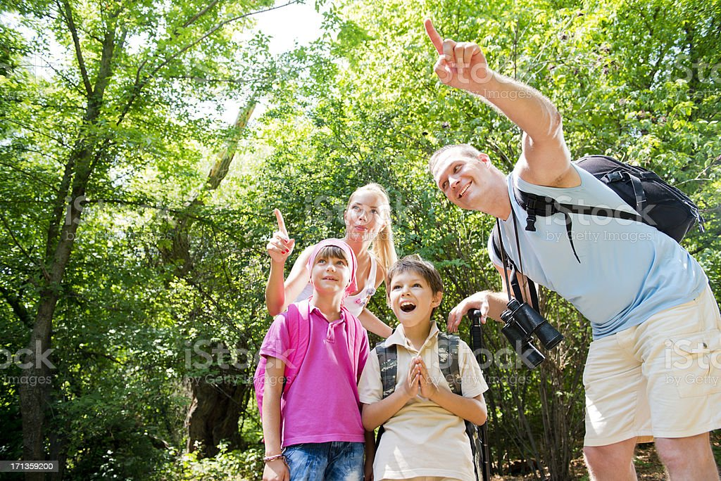An excited family of four on a hiking trip royalty-free stock photo