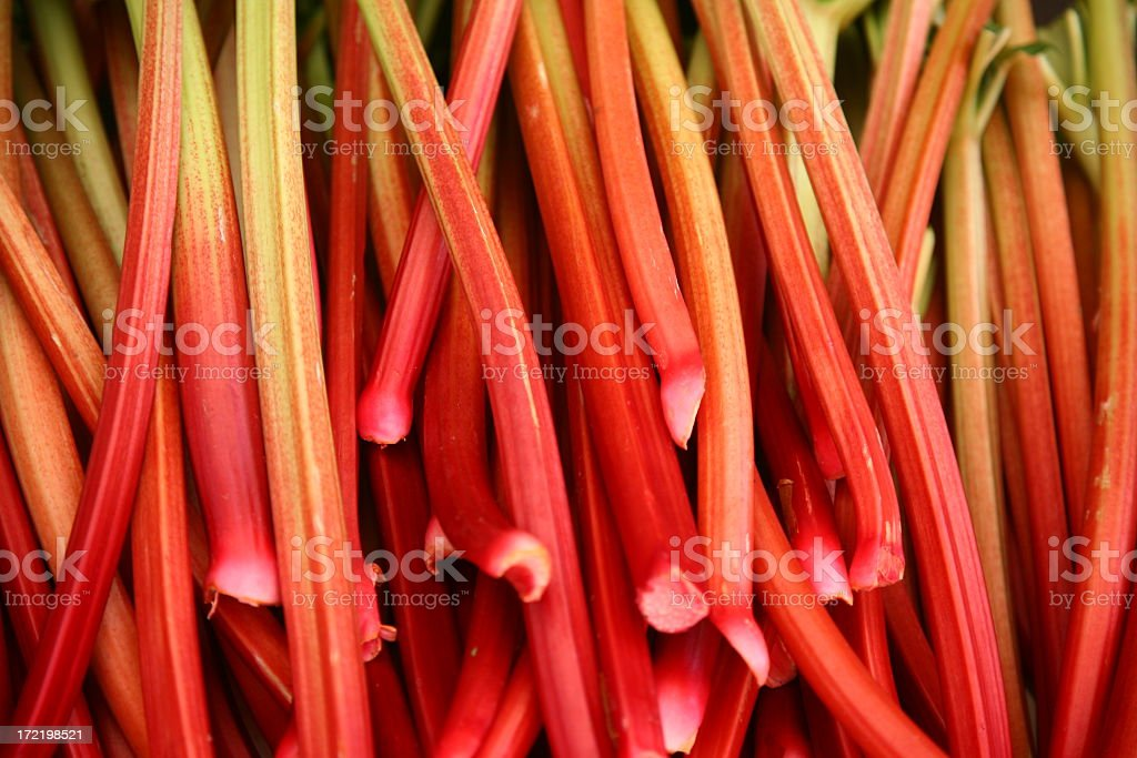An extensive array of ripe red rhubarb stalks stock photo