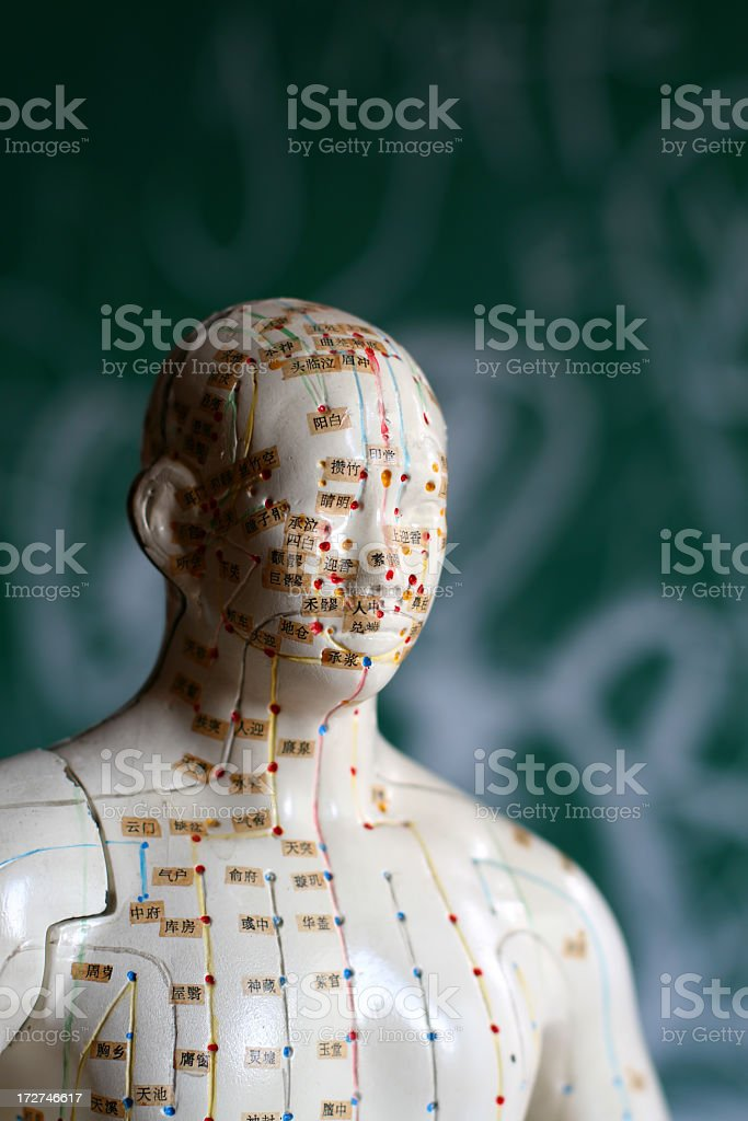 An image of an acupuncture dummy stock photo