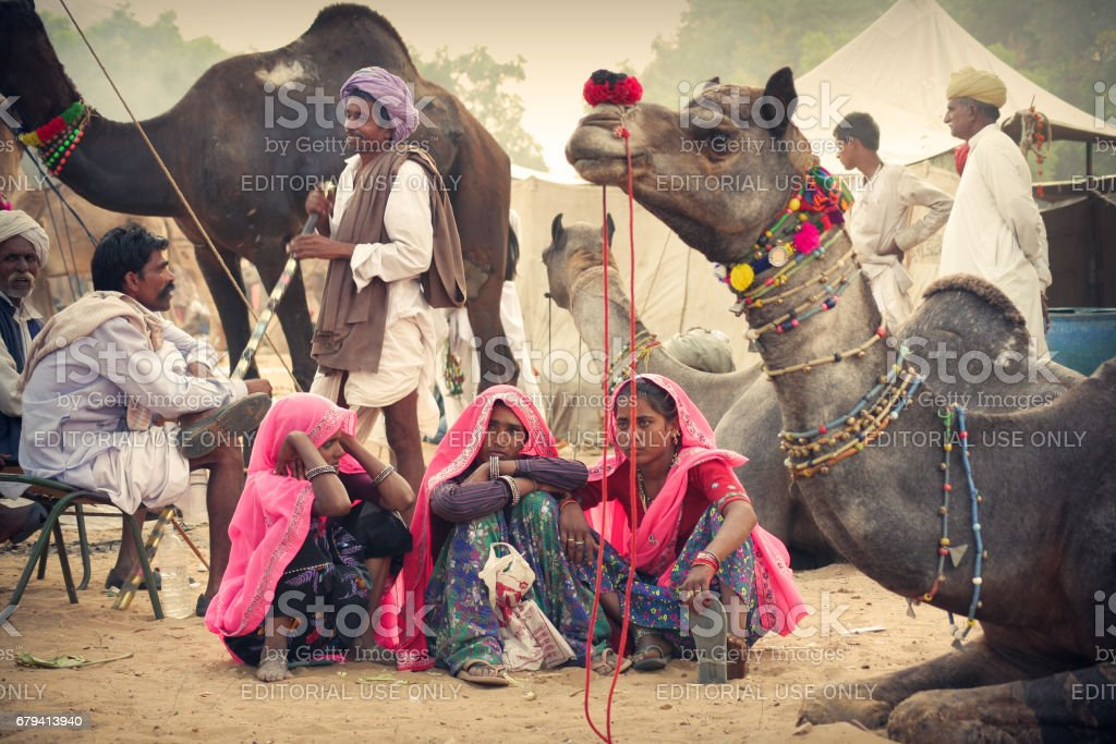 An Indian Rajasthani Group of people with their decorated camels at Pushkar Camel Fair stock photo