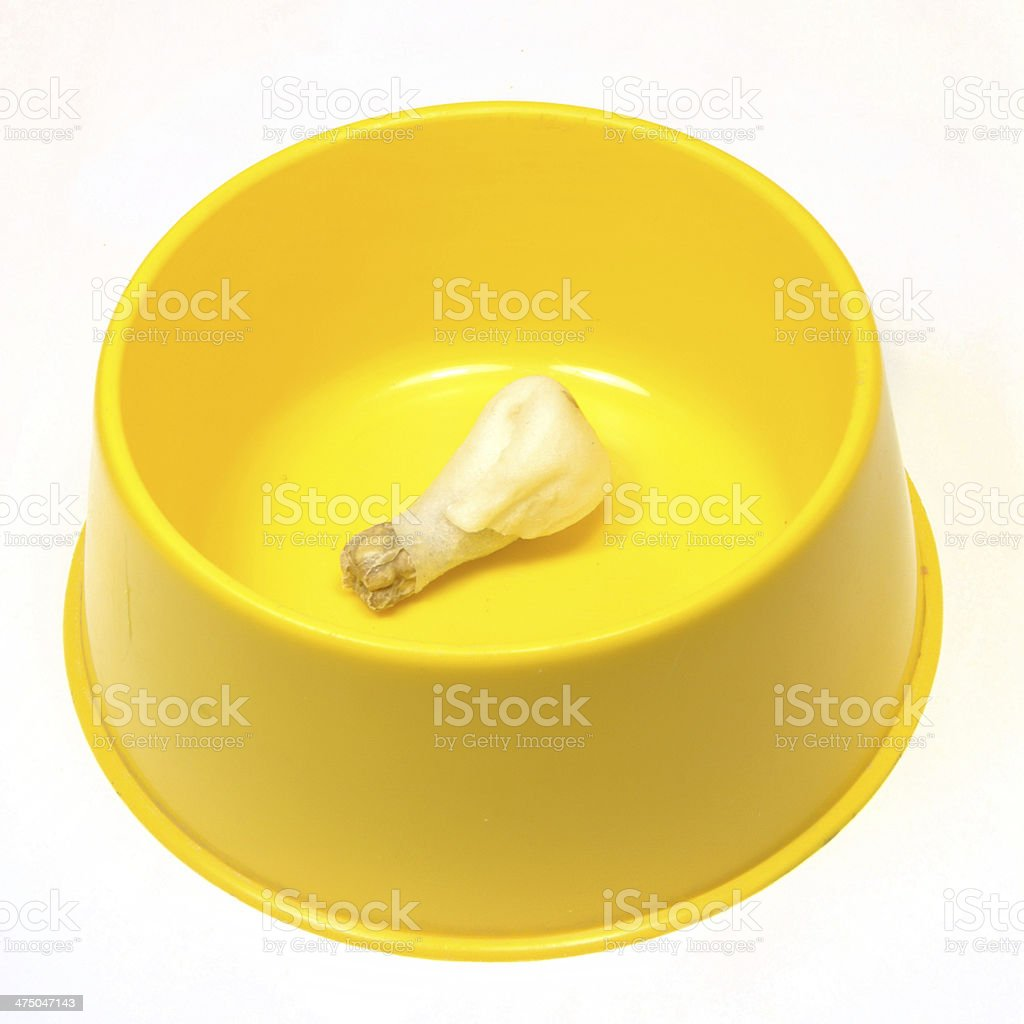 An isolated bowls with different dog foods stock photo