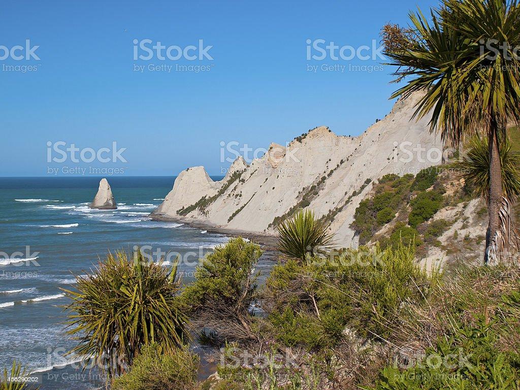 An ocean cape royalty-free stock photo
