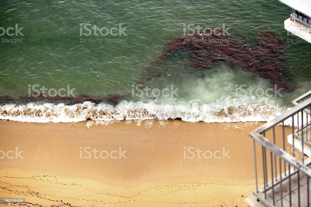 An oil spill at the beach on the Gulf Coast of Mexico stock photo