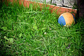An old ball on the lawn