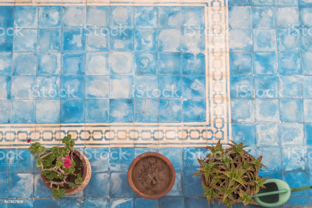 An old patio with plants. stock photo