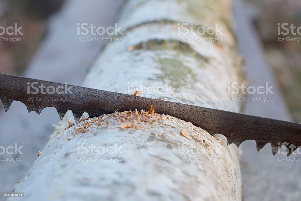 An old rusty saw stock photo