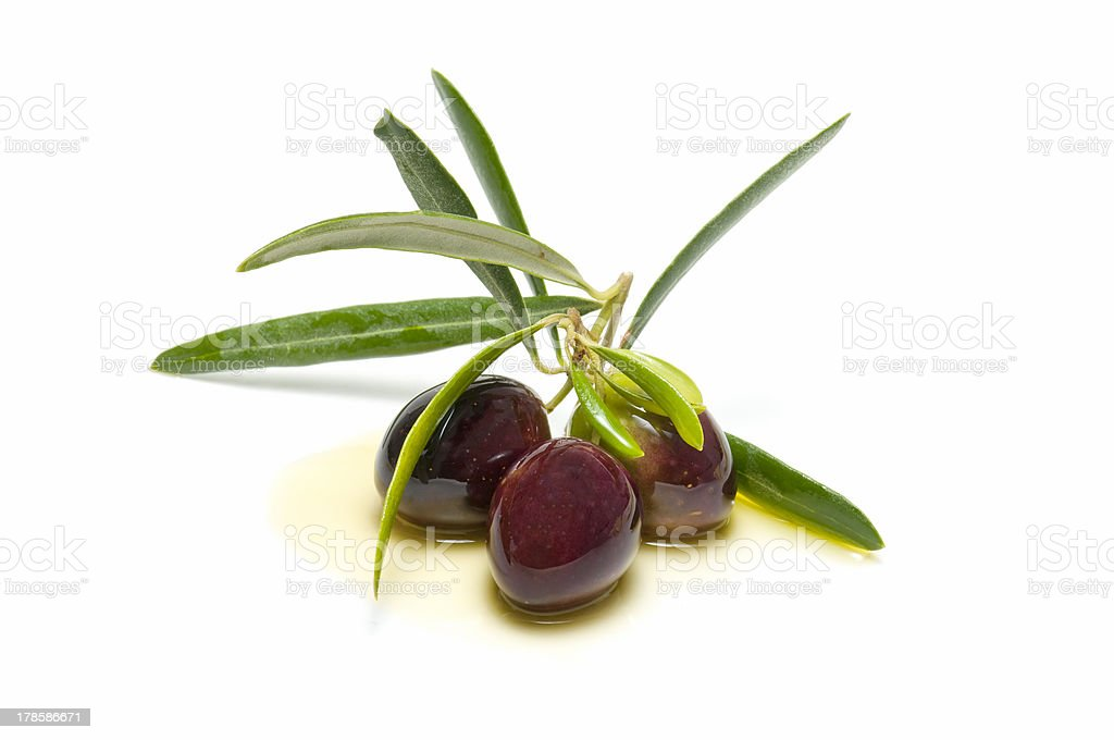 An olive branch with three olives royalty-free stock photo