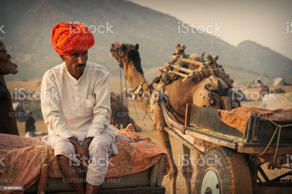 An unidentified Rajasthani man sitting on a camel pulled Wagon Cart at Pushkar Camel Fair stock photo