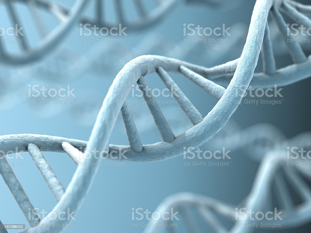 An up close picture of DNA strands stock photo