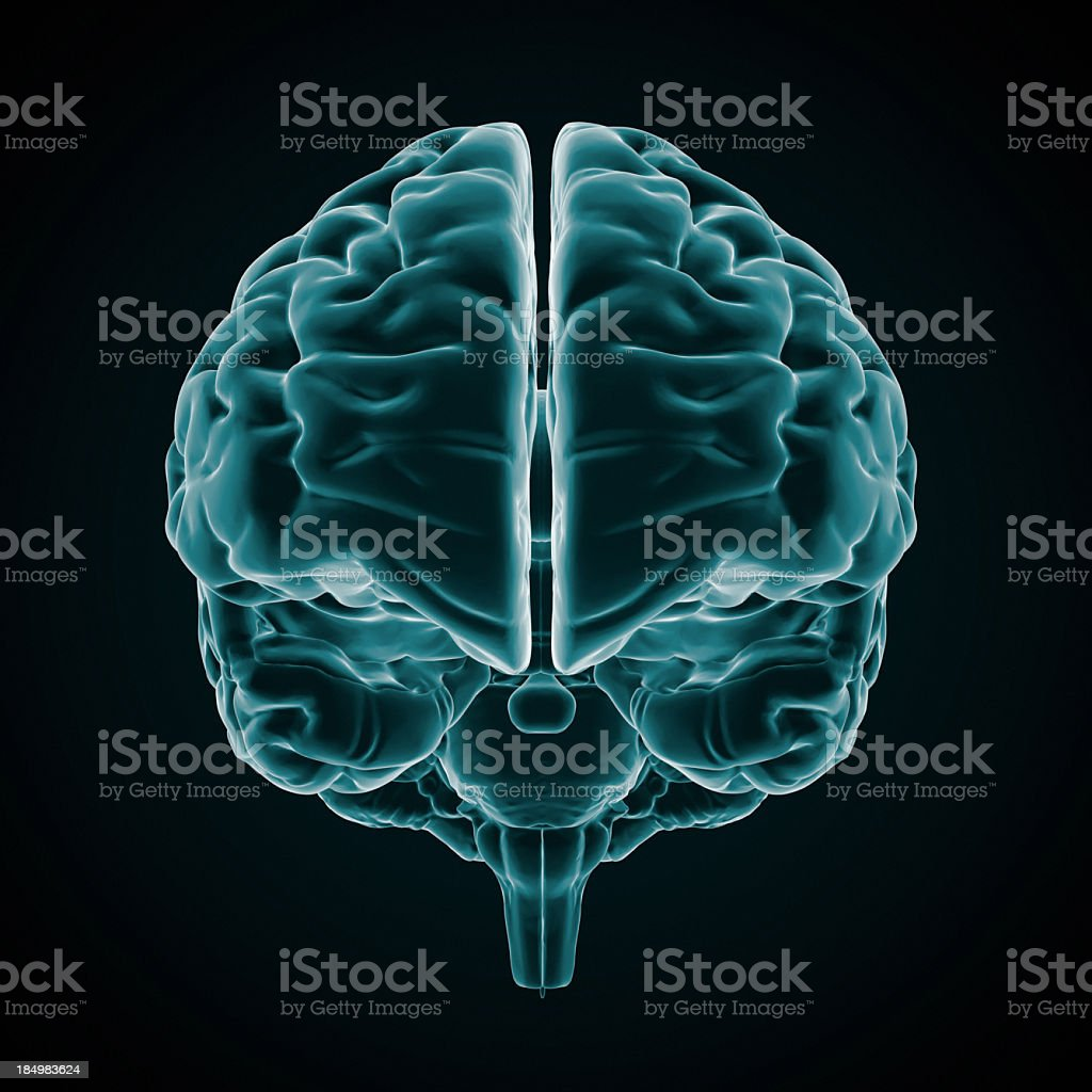 An x-ray of the human brain on a black background stock photo