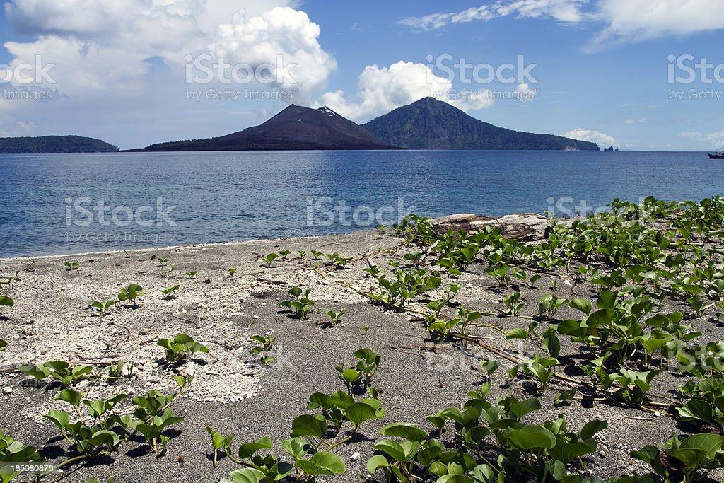 Anak Krakatau Panorama view from beach stock photo