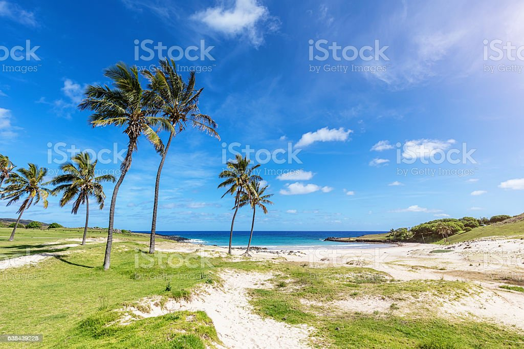 Anakena Beach Easter Island Rapa Nui Chile stock photo