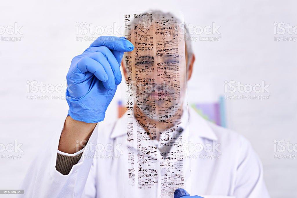 DNA analysis in progress stock photo