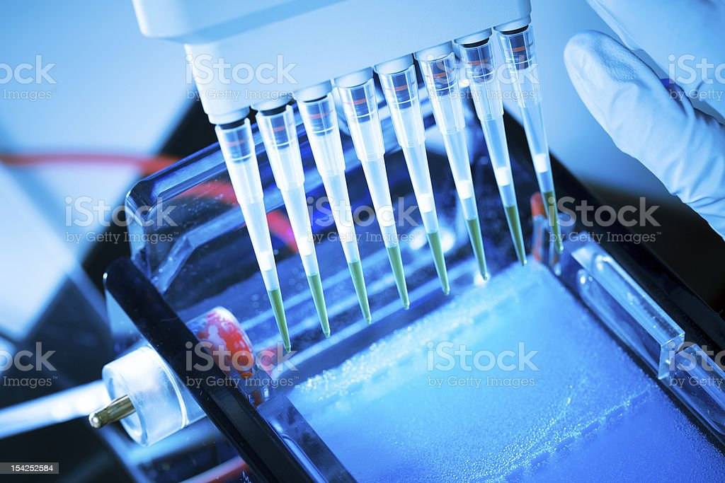 DNA analysis royalty-free stock photo